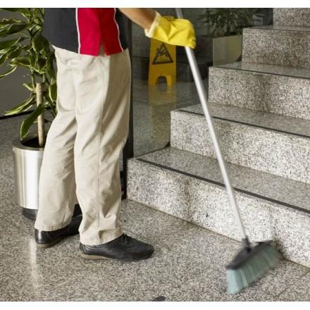 Cepillo Mantenimiento Eco (En uso)