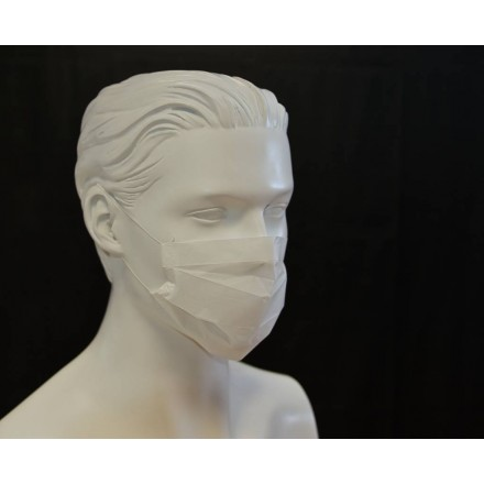 Mascarilla papel (100 uds.)